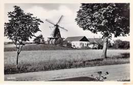 SVERIGE Suède - SKANE Scanie : Moulin à Vent / Windmill Windmühle Windmollen Molen - CPSM Photo PF - Sweden Schweden - Zweden