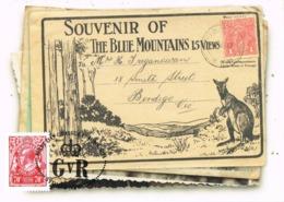 34633. Tarjeta Maxima SYDNEY (Australia) 2000. Sello Sobre Sello. Blue Mountaqins - Sellos Sobre Sellos