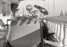 1973 CAT CATS CHAT CHATS GATOS BEACH PLAGE PORTUGAL AMATEUR 35mm ORIGINAL NEGATIVE Not PHOTO No FOTO - Photographica
