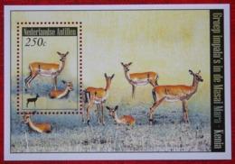 Blok Dieren Wild Animals NVPH 1858 2008 MNH / POSTFRIS NEDERLANDSE ANTILLEN / NIEDERL. ANTILLEN / NETHERLANDS ANTILLEN - Niederländische Antillen, Curaçao, Aruba