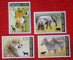 ELefant Zebra Dieren Wild Animals Giraf NVPH 1854-1857 2008 MNH / POSTFRIS NEDERLANDSE ANTILLEN / NETHERLANDS ANTILLES - Niederländische Antillen, Curaçao, Aruba