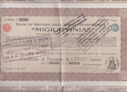 Azioni Titoli Somalia Mogadiscio 100 Azioni Saline Ed Industrie Somalia Settentrionale Migiurtinia 1928 - Africa