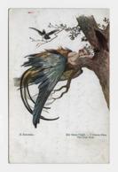 S. Solomko  Ca. 1914y. Der Blaue Vogel / T.S.N.  No. 155   D144 - Solomko, S.