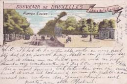 185915Bruxelles, Souvenir De Bruxelles. Avenue Louise-Bois De La Gambre. (obliteré 1902) - Avenues, Boulevards