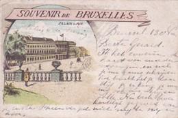 185916Bruxelles, Souvenir De Bruxelles. Palais De Roi. (obliteré 1902) - Monuments, édifices