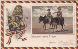 185987Ostende, Souvenir De La Plage (obliteré 1903)(voir Coins) - Oostende