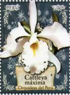 Lote P2008-5, Peru, 2008, Sello, Stamp, 2 V, Orquideas, Orchid, Cattleya, Catleya - Perú