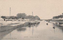 17 - SAUJON - Ribérou - Le Port - Saujon
