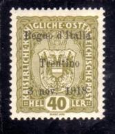 TRENTINO ALTO ADIGE 1918 SOPRASTAMPATO D'AUSTRIA OVERPRINTED HELLER 40h MH FIRMATO SIGNED - Bezetting 1° Wereldoorlog