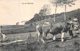 La Charrue Faivre Locca 45 Labour Attelage Agriculture - France