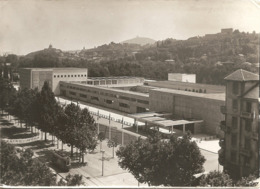 TORINO - FOTO DI ARCHIVIO Probabile Prova Per Stampa Di Cartoline - Dim. Cm 18 X 13 - (rif. FT4) - Italie