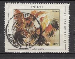 #1, Pérou, Peru, Coq, Rooster, Oiseau, Bird - Perú