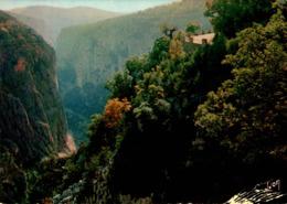 Grand Canyon Du Verdon Corniche Sublime Falaises Du Bauchet 1982    CPM Ou CPSM - France