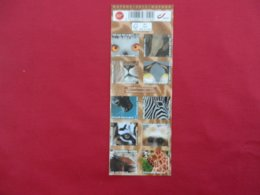 Belgique - Carnet De 10 Timbres Neufs 50 Gr- Zoo Antwerpen - 2013 - Markenheftchen 1953-....