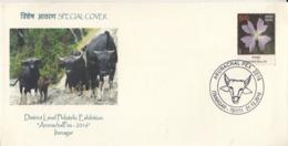 India  2016  Cows  Buffalows  Itanagar  Special Cover  # 24005   D Inde  Indien - Cows