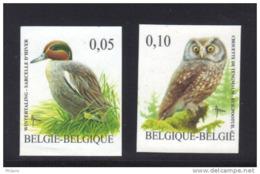BELGIQUE  BUZIN COB N° 3623/4 ND . ** MNH (3T153) - 1985-.. Birds (Buzin)