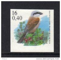 BELGIQUE BUZIN COB N° 2931 ** (MNH) ND. (3T26) - 1985-.. Birds (Buzin)
