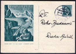Czechoslovakia Prague 1938 / 10th Sokol Games, X. Vsesokolsky Slet Vysoke Tatry / Falcon Winter Games, Postal Stationery - Timbres
