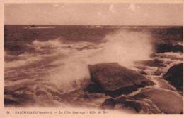 29 BRIGNOGAN-PLAGE La Côte Sauvage, Effet De Mer - Brignogan-Plage