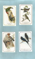 10 Calendriers 1996 Oiseaux - Klein Formaat: 1991-00