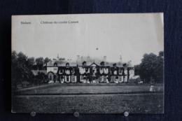 I-181 /  Liège  Hannut -  Blehen  Château Du Comte Cornet  /  Circulé   1929 - Hannut