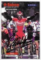 CARTE CYCLISME MARIO CIPOLLINI SIGNE TEAM SAECO 1998 - Ciclismo