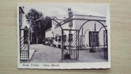 LOMBARDIA CARTOLINA DA RIVOLTA D'ADDA CREMONA COLONIA FLUVIALE FORMATO GRANDE NON VIAGGIATA - Cremona