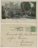 Brazil 1920 Postcard Colorized Photo Botanical Section Paraense Museum Belém Pará State Editor Alfredo Augusto Silva - Belém