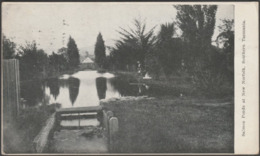 Salmon Ponds At New Norfolk, Southern Tasmania, 1913 - Postcard - Australien