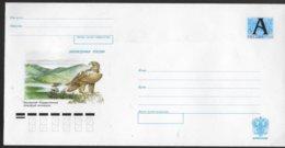 RUSSIE Lettre PAP   Oiseaux  Aigles - Aigles & Rapaces Diurnes