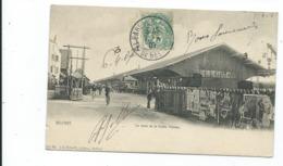 Belfort  La Gare De La Petite Vitesse - Stations With Trains