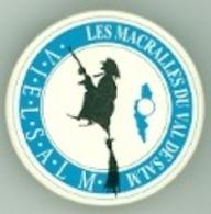 Vielsalm - Les Macralles - Pins