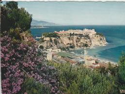 MONACO  Le Rocher De Monaco - Mehransichten, Panoramakarten