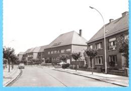Zelzate Gent-Gand)-+/-1960-Hospice En Moederhuis-Vieille Voiture-Oldtimer-Vintage Car-Opel Kapitän-Huis Blondine Zelzate - Zelzate