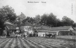 40)  MEILHAN  - Paysage (  Attelage De Bœufs Au Labour ) - Other Municipalities