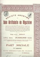 Soie Artificielle De Myszkow - Renaix - Ronse -  1929 - Textiel
