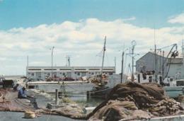 Port-la'Nouvelle - Le Port De Pêche - Port La Nouvelle
