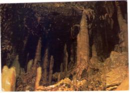 Equi Terme (Ms). Lunigiana. Grotte Di Equi. La Foresta. VG. - Massa