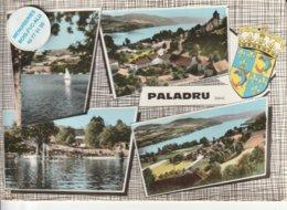 38 - Très Belle Carte Postale Semi Moderne Dentelée De  PALADRU  Multi Vues - Other Municipalities