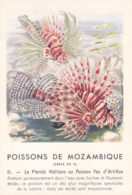 CHROMO - Biscottes Clément - Poisson - Pteroïs Volitans - Mozambique - Publicité Marinol - Laboratoire La Biomarine - Animals