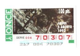 CUPÓN DE ONCE 1993 LOTTERY LOTERIE SPAIN LOTERÍA FAUNA FAUNE IBÉRICA ARÁCNIDOS ARAÑA ARAÑAS SPIDER ARAIGNÉE SPINNE VER - Billetes De Lotería