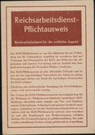 RAD  Reichsarbeitsdienst HJ BDM  Mädel  Ausweis Danzig  Gdansk Nazi  1943   Nr. 00912 - 1939-45
