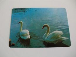Swan Cisne Atelier De Gravura Gualberto Monteiro Porto Portugal Portuguese Pocket Calendar 1987 - Klein Formaat: 1981-90