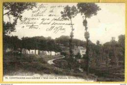 CHATILLON Sur LOIRE- Vue Peu Courante Sur La FAUSSE RIVIERE - Chatillon Sur Loire