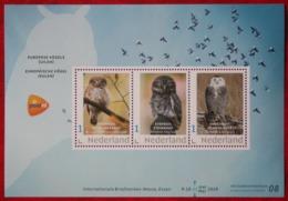 Sheet Uil Owl Búho Hibou Eule Vogel Bird Oiseaux Beurs Essen 2019 POSTFRIS MNH ** NEDERLAND NIEDERLANDE NETHERLANDS - Nuevos