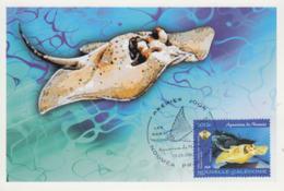 Carte  Maximum  1er  Jour    NOUVELLE  CALEDONIE    Aquarium  De  NOUMEA     Raie  à  Points  Noirs  Et  Bleus   2004 - Poissons