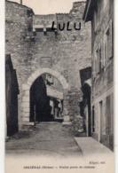 DEPT 69 : édit. Klipfel : Orliénas Vieille Porte Du Château - France