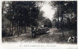 RONCE-LES-BAINS , Tram Forestier - France