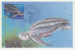 Carte  Maximum  1er  Jour    NOUVELLE  CALEDONIE    Aquarium  De  NOUMEA     TORTUE   LUTH   2002 - Turtles