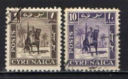 CIRENAICA - 1950 - CAVALIERE SENUSSITA - USATI - Cirenaica